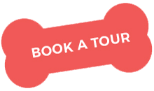 https://petnessworld.com/wp-content/uploads/2019/08/book_a_tour.png